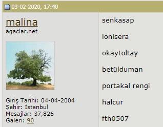 Name:  sil.jpg Views: 215 Size:  24.6 KB