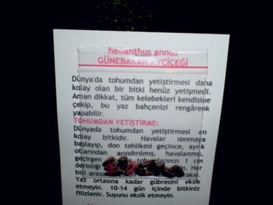 Name:  ayçiçekDSCN9087_tn.jpg Views: 3765 Size:  14.4 KB