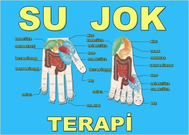 Name:  SU_JOK.jpg Views: 17709 Size:  38.3 KB