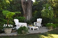 Name:  outdoor-sitting-area-under-tree.jpg