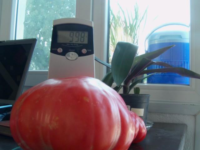 Name:  pembe domates (18).JPG Views: 2302 Size:  53.7 KB