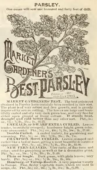 Name:  Parsley.jpg Views: 372 Size:  54.9 KB