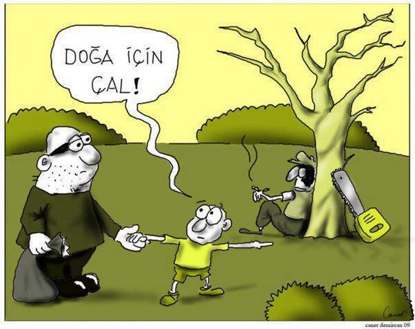 Name:  doga_icin_cal.jpg