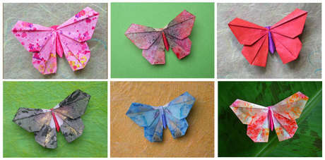 Name:  butterfly02.jpg