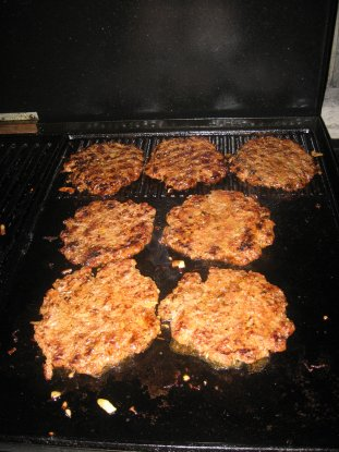 Name:  Hamburger 015.jpg Views: 2098 Size:  33.5 KB