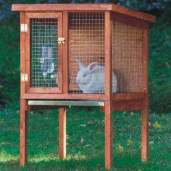 Name:  rabbit.jpg Views: 25474 Size:  17.8 KB