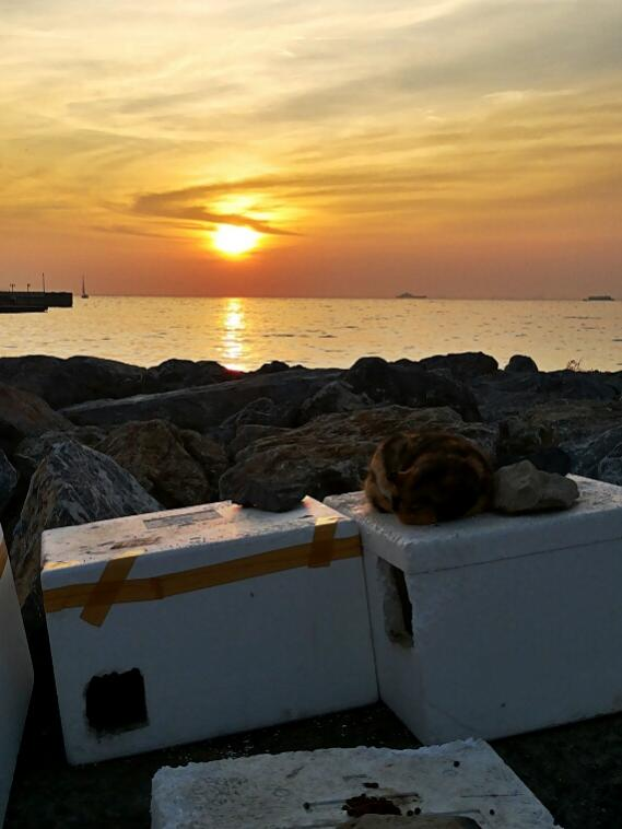 Name:  Sunset at Kalamıs bay.jpg Views: 365 Size:  41.7 KB
