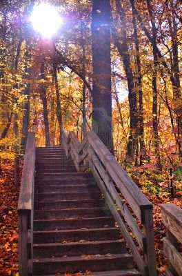 Name:  760319-wooden-stairs-in-the-fall--autumn.jpg
