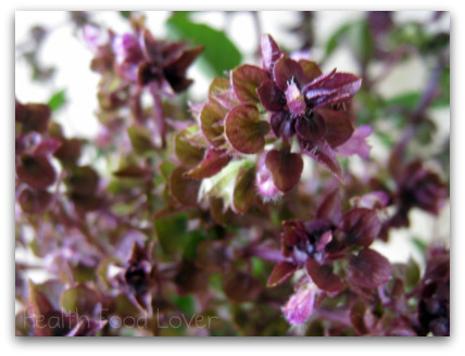 Name:  Purple-Basil-Flower-and-Orange-Zest-Tea-011-ds-pck-sml-wp1.jpg Views: 616 Size:  65.0 KB