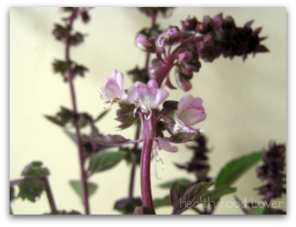 Name:  Purple-Basil-Flower-and-Orange-Zest-Tea-013-ds-pck-sml-wm.jpg Views: 324 Size:  51.4 KB
