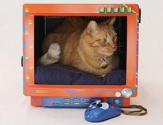 Name:  eski-televizyondan-kedi-evi-yapimi-2.jpg Views: 9491 Size:  24.1 KB