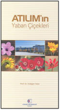 Name:  yaban.jpg Views: 528 Size:  7.7 KB