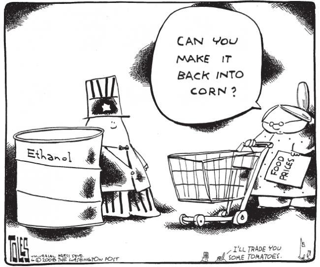 Name:  make it back into corn.jpg Views: 15774 Size:  61.0 KB