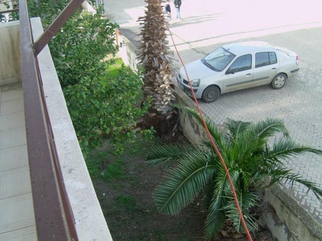Name:  palmiye (23).jpg Views: 6577 Size:  54.7 KB