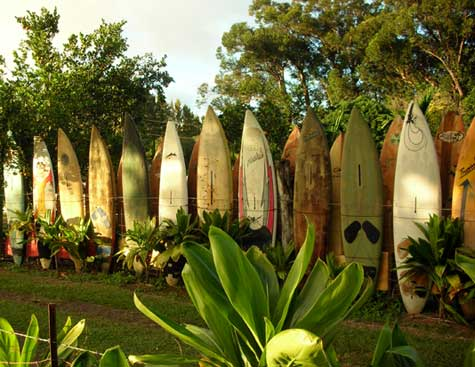 Name:  surfboard-fence-1-18071.jpg