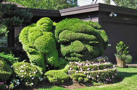 Name:  sand-point-topiary.jpg Views: 8613 Size:  35.4 KB