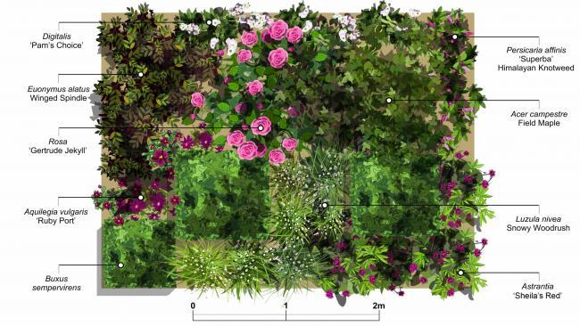 Name:  gülgrup-2qvc garden.jpg Views: 954 Size:  58.5 KB