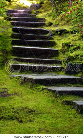 Name:  stock-photo-japanese-garden-stairs-55637.jpg Views: 6307 Size:  58.3 KB