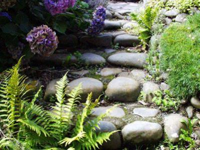 Name:  stone-steps-hydrangea.jpg Views: 6577 Size:  33.3 KB