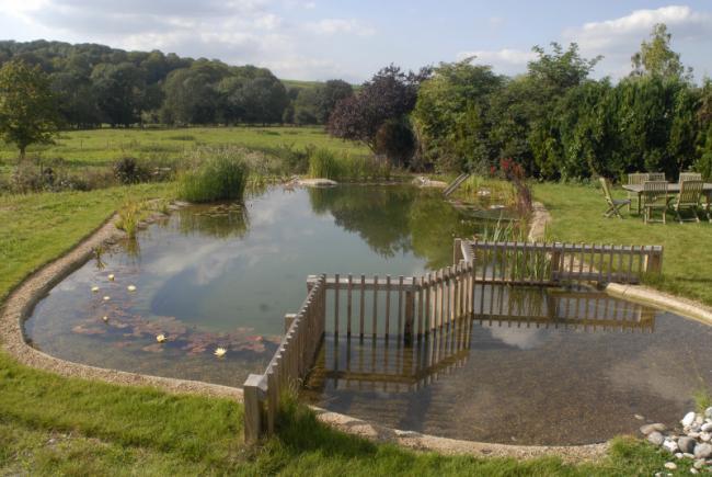 Biyolojik y zme havuzlar for Como hacer una piscina de obra barata
