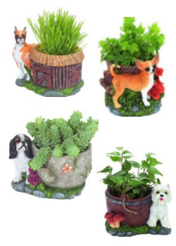 Name:  dog_flower_pot.jpg
