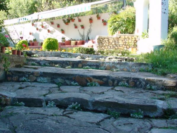 Name:  bahçe res.M353 (600 x 450).jpg Views: 8117 Size:  53.4 KB