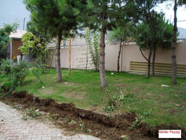 Name:  Çam Ağacı Sökümü.jpg Views: 22921 Size:  69.8 KB