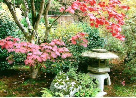 Name:  japonbahçesi.jpg Views: 5192 Size:  51.8 KB
