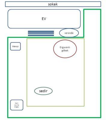 Name:  plan-1.jpg Views: 2754 Size:  14.2 KB