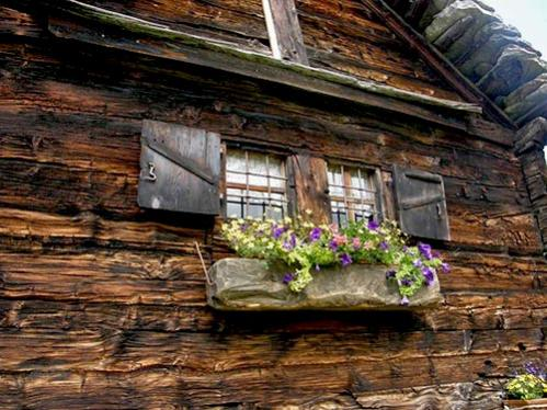 Name:  balcone fiorito.jpg Views: 7233 Size:  47.9 KB