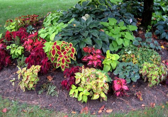 Name:  rosedale-gardens-7-1000px.jpg Views: 6465 Size:  72.2 KB