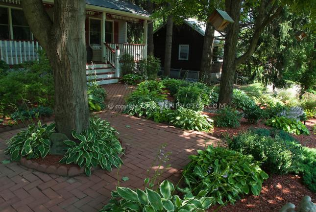 Name:  Curb-Appeal-JAW8035.jpg Views: 6359 Size:  70.4 KB