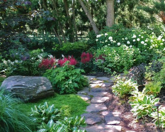 Name:  shade-garden-plants-annuals.jpg Views: 6746 Size:  72.4 KB
