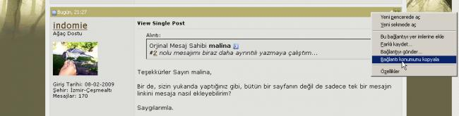 Name:  tekMesajAlIntI.jpg