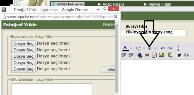 Name:  Adsız.jpg