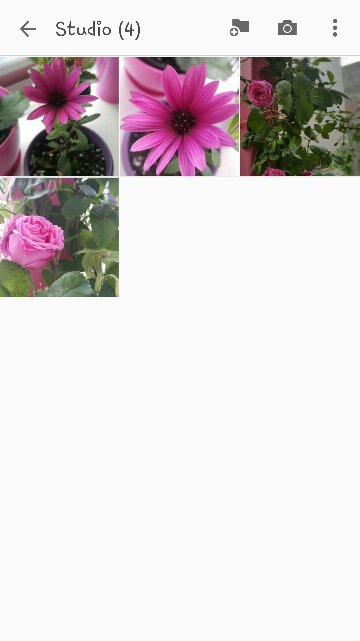 Name:  2019-04-22 18.30.40.jpg Views: 97 Size:  33.2 KB