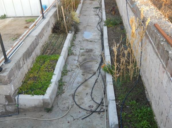 Name:  bahçeye çıkş yolu ve yeşillik tarhları.jpg Views: 7219 Size:  52.3 KB