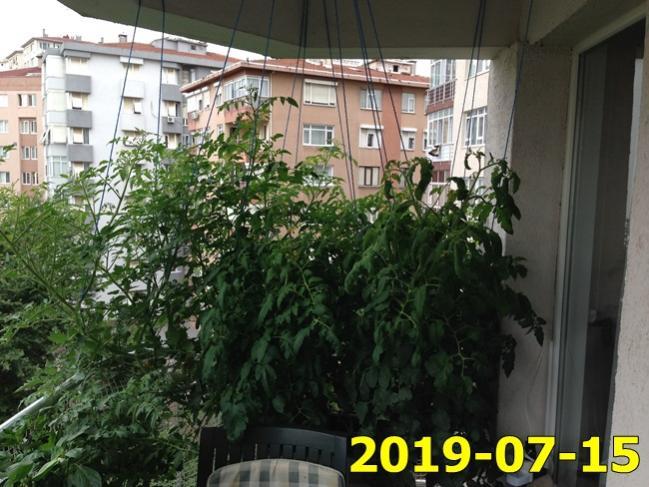 Name:  IMG_1714.jpg Views: 377 Size:  61.0 KB