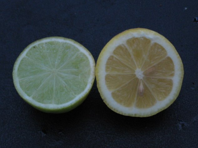 Name:  agaclarimdan ornekler[tahiti lime] 004.jpg Views: 19462 Size:  36.4 KB