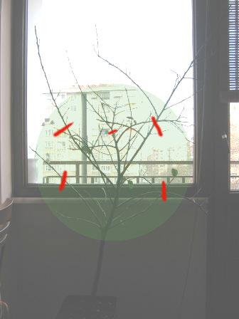 Name:  lerdemir.jpg Views: 1766 Size:  21.6 KB