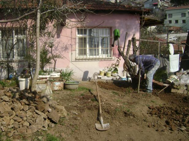 Name:  001-25.03.2012-01.jpg Views: 5791 Size:  70.5 KB