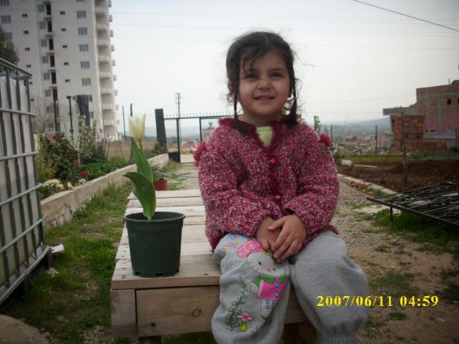 Name:  bahçe çiçeksiz boş halleri.jpg Views: 1044 Size:  48.9 KB
