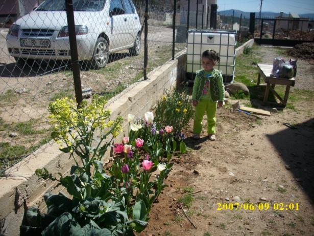 Name:  bahçe işlerine başlarken.jpg Views: 1124 Size:  71.1 KB