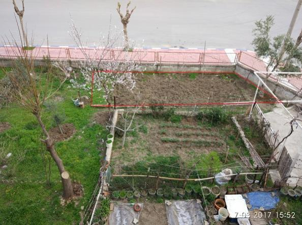 Name:  bahçe1.jpg Views: 1455 Size:  57.4 KB