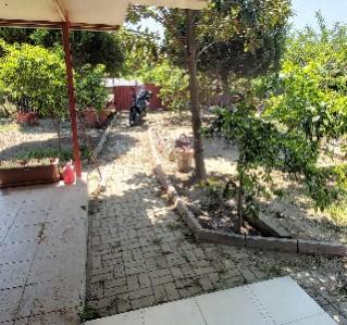 Name:  bahçe içi 4.jpg Views: 275 Size:  29.0 KB