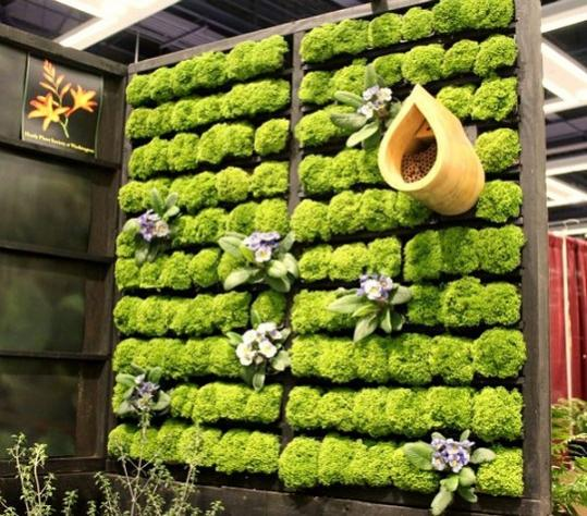 Name:  Combine-several-different-wooden-pallets-to-create-a-grand-living-wall-planter.jpg