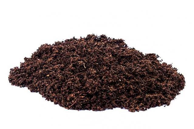 Name:  peat moss.jpg Views: 187 Size:  39.8 KB