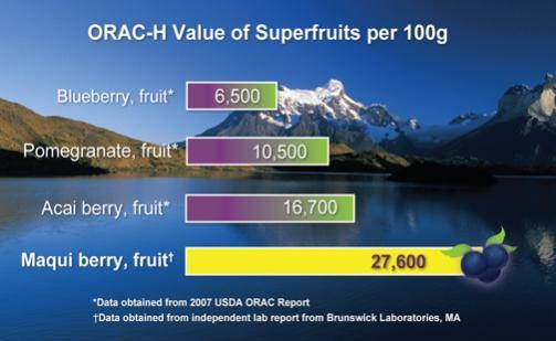 Name:  maqui-berry-comparison-chart.jpg Views: 1924 Size:  24.2 KB
