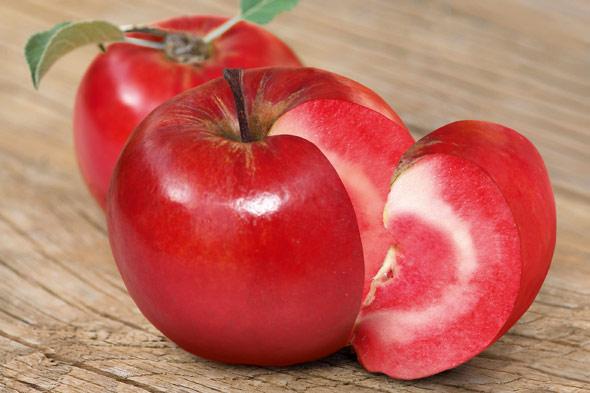 Name:  apple-red-flesh.jpg Views: 3713 Size:  55.1 KB
