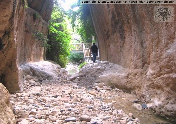 Hatay - Samandağ - Titüs (vespasianus) Tüneli